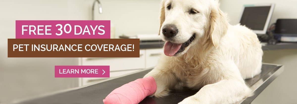 Trupanion 30 Day Free Pet Insurance Offer