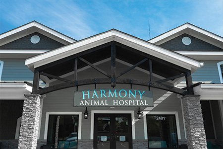 Harmony in house pharmacy